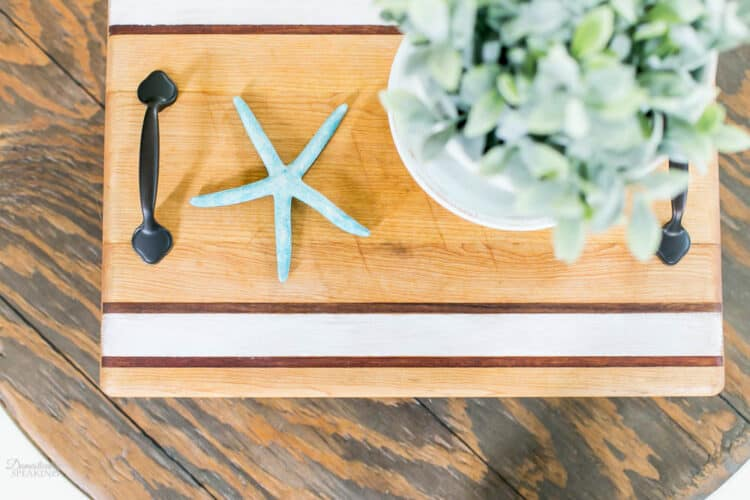 Striped tray with a pot plant and a blue starfish