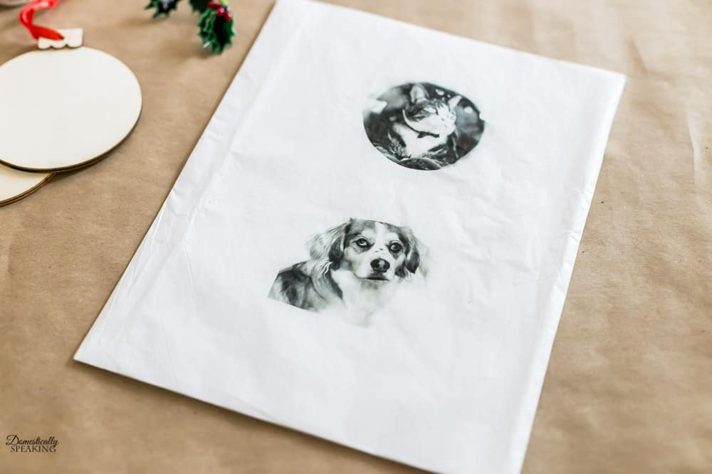 Fur babies printed on tissue paper to make Christmas ornaments.