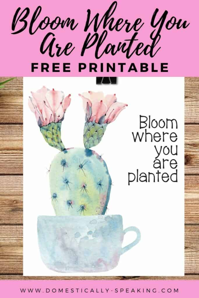 Free Spring Printable: Bloom Where You Are Planted - cute teacup with a flowering cactus