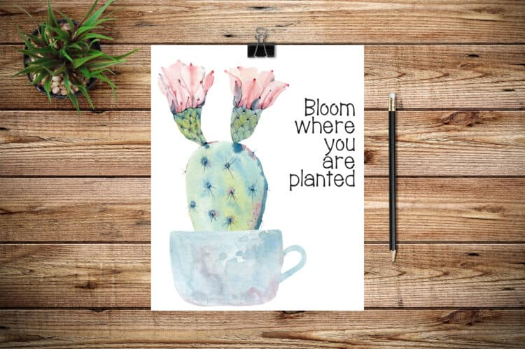 Bloom Where You Are Planted Spring Printable - grab yours for free